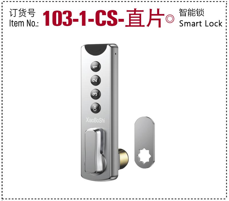 103-1-CS-直片